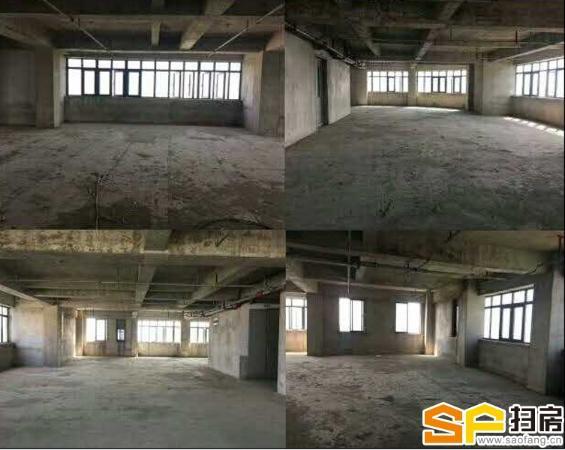 二汽转盘悦活荟自贸区内商务公寓写字楼 租金达五千 升值空间高