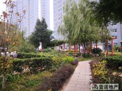 安居推荐!122m² 3房 56.6万元 鹿城镇 毛坯 南北 珑曦苑 让你惊喜不断!