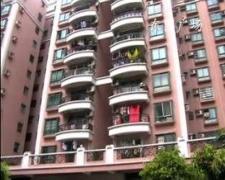 东圃广场电梯复式大户型豪华天台