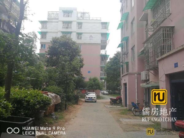 99m² 衢州 0万元 毛坯 南北 2房 和谐家园 ,你可以拥有,理想的家!
