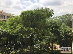 家具家电全齐,0 20元/月 精装 98m² 4房 中惠香樟半岛 东 樟木头 ,拎包即住!