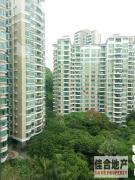 绿茵豪庭 2房 精装 0 元/月 樟木头 东 96m² 超大阳台,小区有泳池
