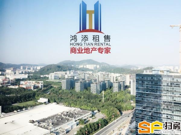 广州绿地中央广场,商务公寓写字楼,价格便宜价65元。