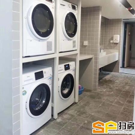 1280元南山蛇口精装公寓出租,带家私,电梯房