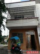 吉房出租,看房方便,简装 0 20元/月 市区-步梯 乐昌 南北 240m² 6房