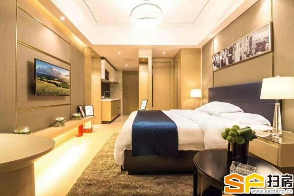 珠江新城CBD中心区 1、5号线双哋铁上盖 带豪装1房1厅 每月收租5000起!