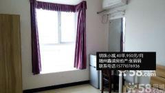 明珠附近 单身公寓 年轻人的选择(曾都明珠小城1室1厅40平米中等装修半年付)