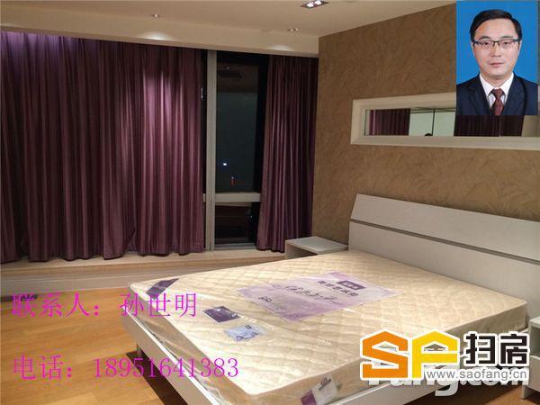 金茂广场优美湖景 中央路南京国际广场怡景公寓五星级湖景房-整租