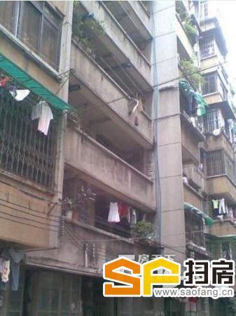 芳村大策社区 近地铁 出门公交 拎包入住整租-整租