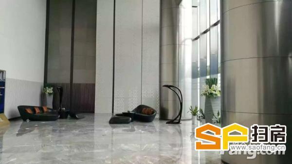 汇金中心 69层超高写字楼 稀缺全层放卖 地标望江