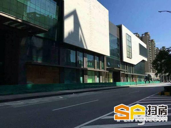 新区步行街紫薇路一线,6米,租金8200元/月