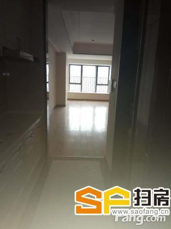 南沙万达广场 宜商 66平米租1500 扫房网
