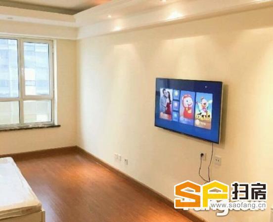 华景新城 理想地 电梯南向一居 整租 情侣 温馨-整租