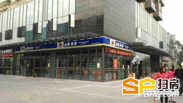 餐饮功能 1线街铺 邦华星际广场 即买即收铺 扫房网