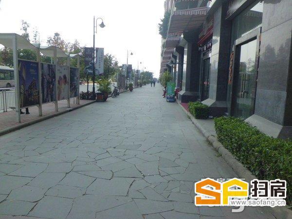 翡翠绿洲 商业街人气 100方218万 单价21800 6米 可分割 扫房网