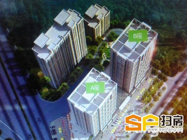 市中心 5A级写字楼 可整层可单套 可贷款 无中介 费 随时