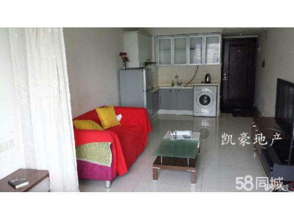 珠江新城马赛国际公寓 1室1厅49平米 简单装修 押二付一(交通方便 采光好) 扫房网