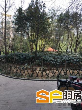 超好的地段!!稀缺2房 78m² 1万元 永威鑫城 南北 郑州 精装