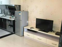 豪装 47m² 1房 瑞安国际公寓 南海 南北2500元/月 ,超值精品,随时看房