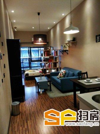 千灯湖CBD 6米层高复式公寓 万达旁 宜家旁 地铁物业